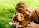 How To Train A Pitbull Dogs Not To Be Aggressive