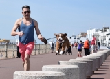 Running With Dogs: Benefits Of Running With Your Dog