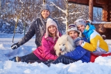 Things To Do With Your Dog In Winter